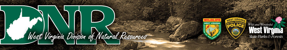 Home page dnr whitewater for Wv dnr fishing license